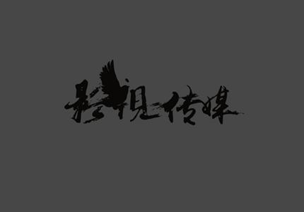 西安网站设计——海格广告网站案例